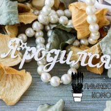 """Чипборд """"Я родился-1"""" ЧНАГ-78"""
