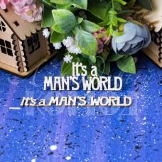 """Набор чипборд """"It's a mans world"""" НО-103"""